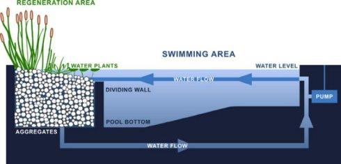 Sistema circulación y filtración del agua